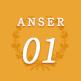 ANSER01