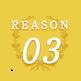 REASON03